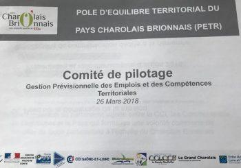 Comite de pilotage emploi du Charolais Brionnais